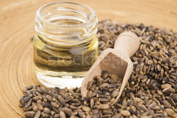 Seeds of a milk thistle (Silybum marianum, Scotch Thistle, Maria Stock photo © joannawnuk