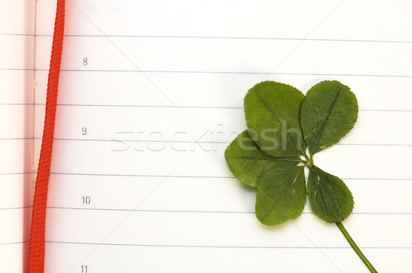 Four Leaf Clover and New Day Stock photo © joannawnuk