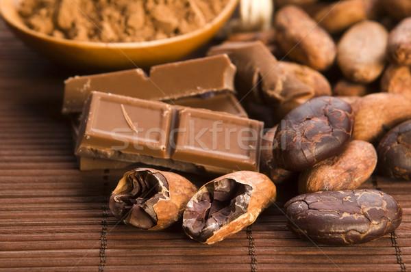 Cacao fagioli cioccolato impianto mangiare grano Foto d'archivio © joannawnuk