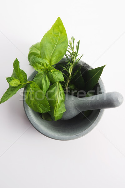 mortar with herbs isolated on a white background Stock photo © joannawnuk