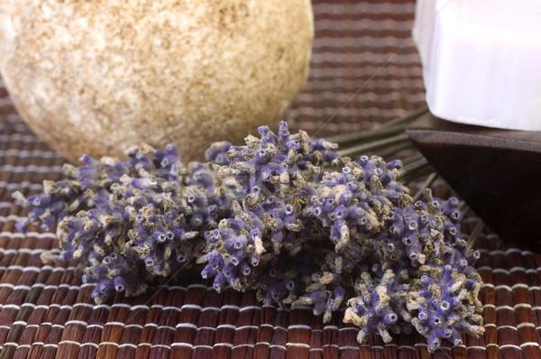 lavender bunch Stock photo © joannawnuk
