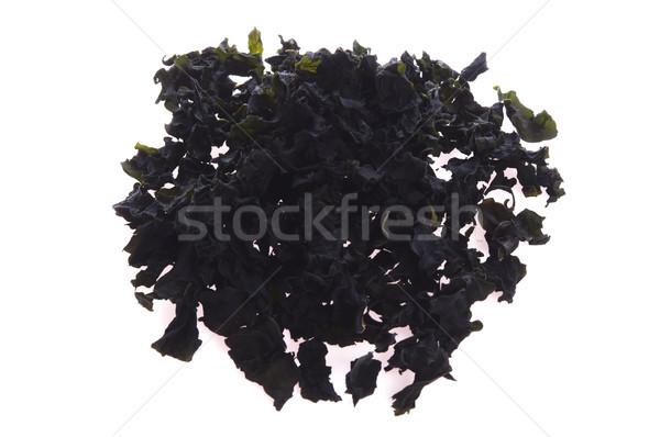 Drogen bruin alge Stockfoto © joannawnuk