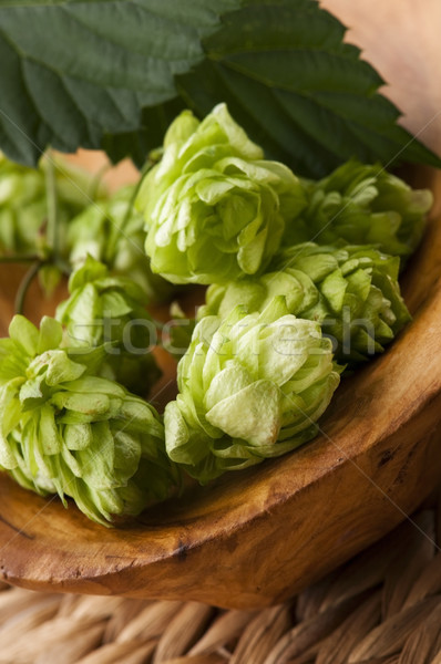 Hop cone and leaves Stock photo © joannawnuk