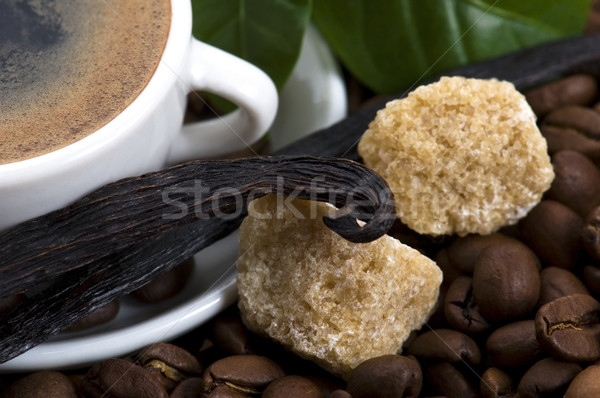 aroma coffee with vanilla and coffee branch Stock photo © joannawnuk