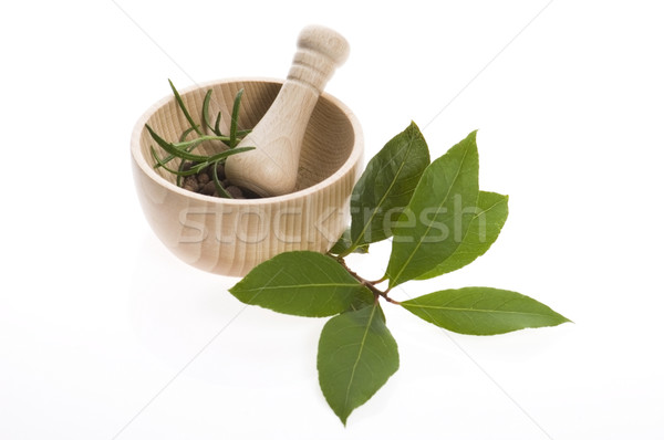 Mortar and pestle, with fresh-picked herbs Stock photo © joannawnuk