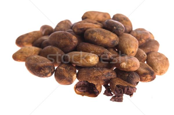 Kakao fasulye yalıtılmış beyaz grup tatlı Stok fotoğraf © joannawnuk