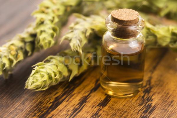 Sideritis taurica extract on wooden background Stock photo © joannawnuk