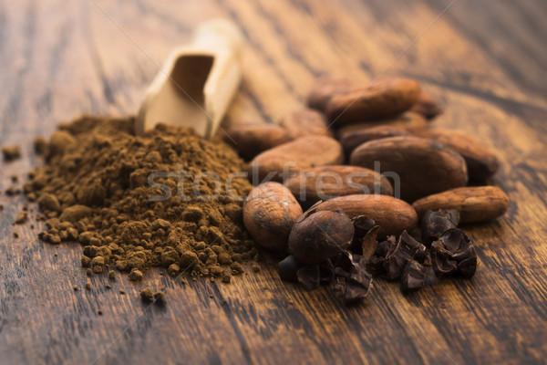 Cacau feijões pó colher chocolate planta Foto stock © joannawnuk