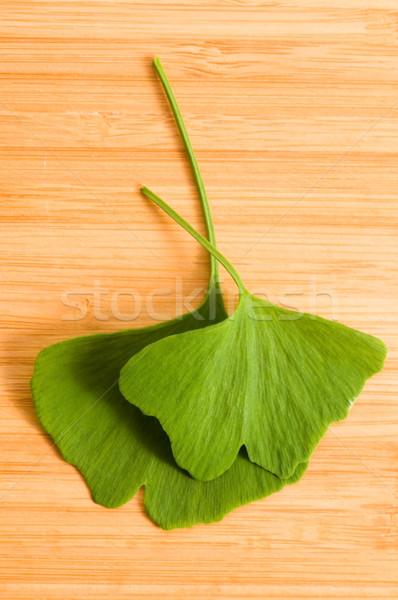 Fresche foglie legno natura foglia sfondo Foto d'archivio © joannawnuk