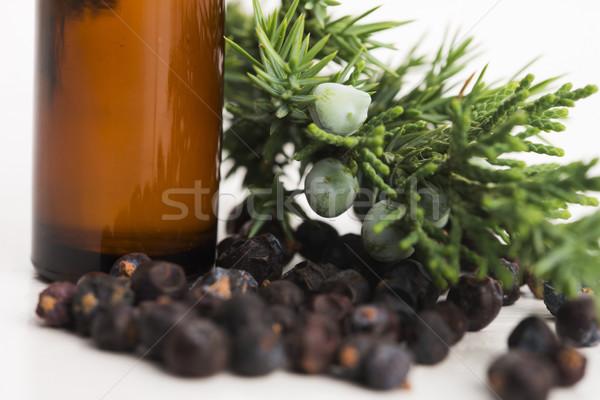 juniper essential oil Stock photo © joannawnuk