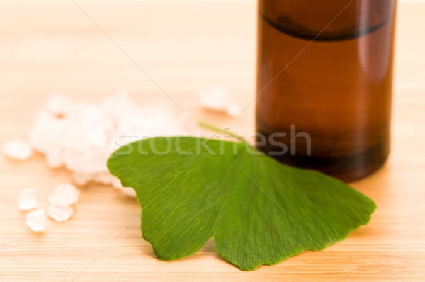 fresh leaves ginko biloba essential oil and sea salt - beauty tr Stock photo © joannawnuk