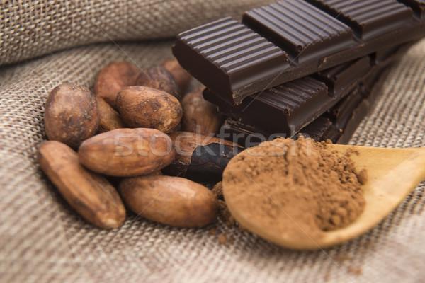 Cacau feijões chocolate planta comer grão Foto stock © joannawnuk