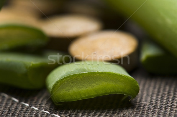 Aloés saúde medicina pele planta Foto stock © joannawnuk