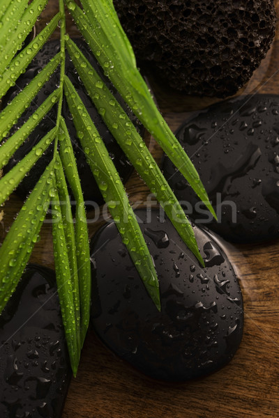 Spa still life, with green leaf, stones and water Stock photo © joannawnuk