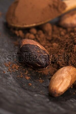 Kakao fasulye toz kaşık gıda bitki Stok fotoğraf © joannawnuk