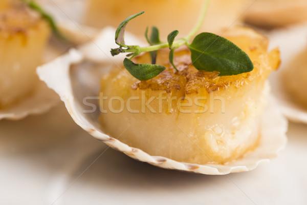背景 レストラン 緑 白 料理 食べる ストックフォト © joannawnuk