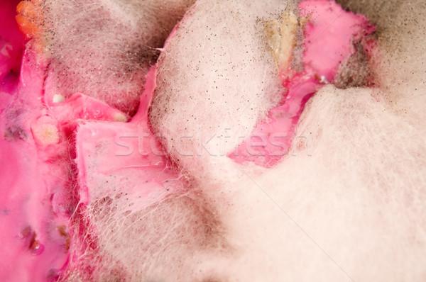 Leves sérült penész extrém közelkép textúra Stock fotó © joannawnuk