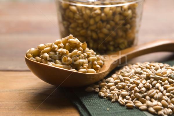 Wheat Germs Stock photo © joannawnuk