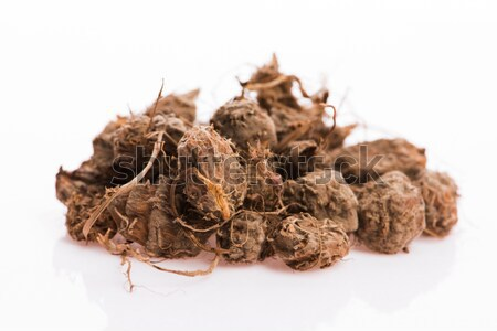 brown muscovado sugar isolated on a white background Stock photo © joannawnuk