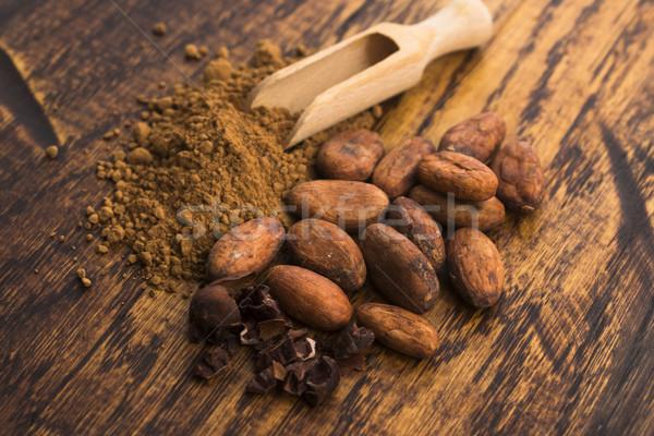 Cacau feijões pó colher cozinhar semente Foto stock © joannawnuk