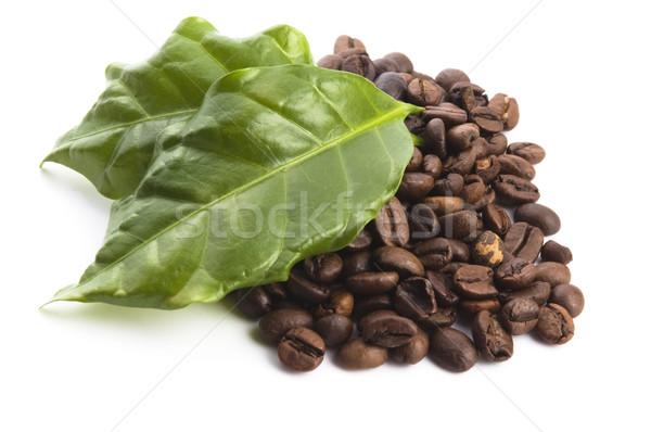 Kávé magvak levelek levél háttér csoport Stock fotó © joannawnuk