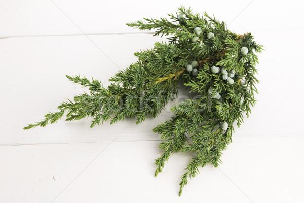 Stockfoto: Plant · bessen · achtergrond · groene · geneeskunde · bladeren