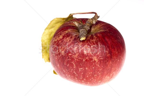Geïsoleerd paradijs rode appel tak water voedsel Stockfoto © joannawnuk