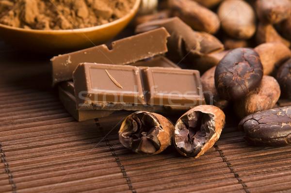 Cacao bonen chocolade plant eten graan Stockfoto © joannawnuk