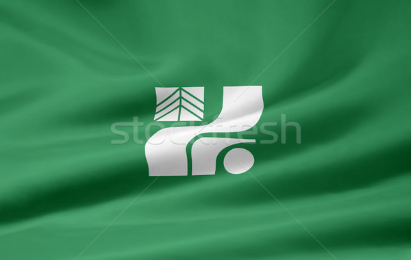 Flag of Tochigi - Japan Stock photo © joggi2002