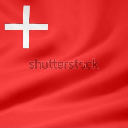 Banderą Szwajcaria projektu góry czerwony Zdjęcia stock © joggi2002