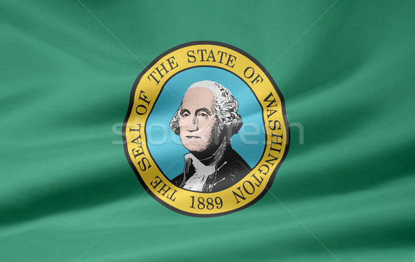 Vlag Washington sterren wind gratis doek Stockfoto © joggi2002