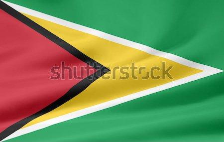Zászló Guyana vidék föld szalag Stock fotó © joggi2002