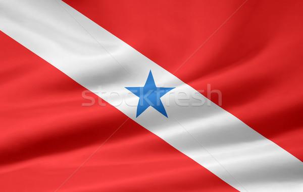 Bayrak dizayn yeşil ülke bez Stok fotoğraf © joggi2002