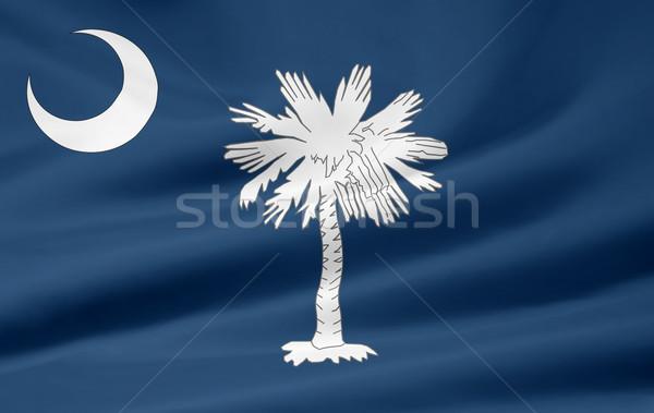 Bayrak Güney Carolina Yıldız mavi beyaz ücretsiz Stok fotoğraf © joggi2002
