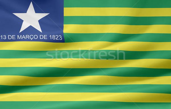 Zászló Brazília terv zöld vidék ruha Stock fotó © joggi2002