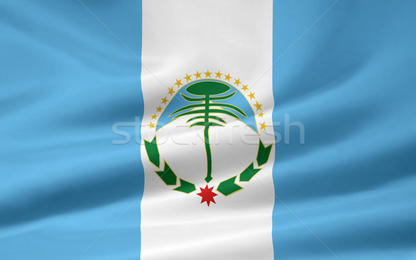 Flag of Neuquen - Argentina Stock photo © joggi2002