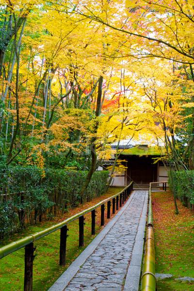 Japanese garden style  Stock photo © JohnKasawa