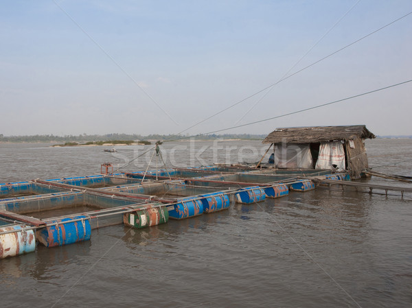 Fishery in the water cages at Mea Khong river Thailand and Laos  Stock photo © JohnKasawa