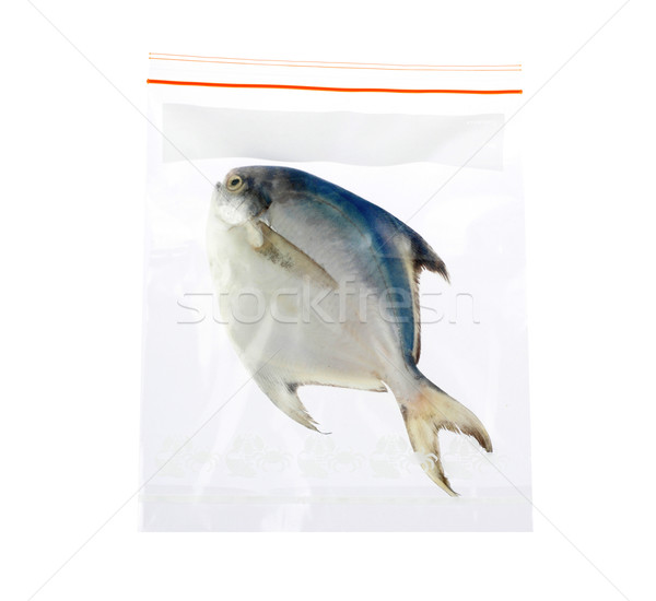 keep your seafood always fresh in the zipper plastic bag Stock photo © JohnKasawa