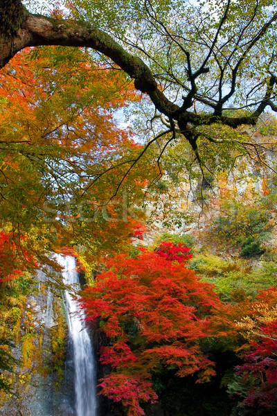 Güzel çağlayan Osaka sonbahar Japonya su Stok fotoğraf © JohnKasawa