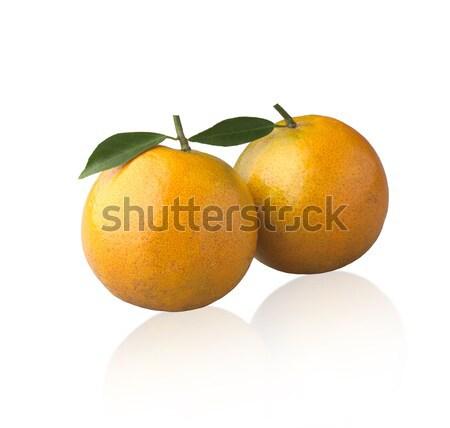 Pomarańczy charakter odizolowany biały liści roślin Zdjęcia stock © JohnKasawa