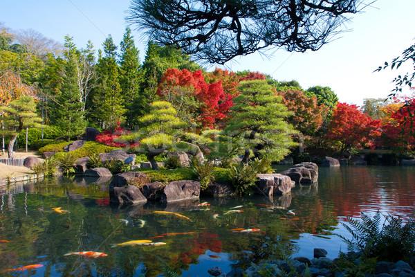 Sonbahar açık park Osaka Japonya Stok fotoğraf © JohnKasawa