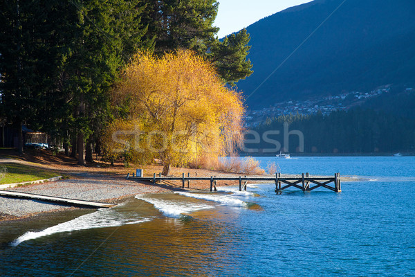 Beautiful day at the Wakatipu lakein early autumn Queenstown Sou Stock photo © JohnKasawa