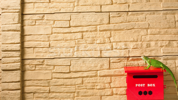 Leguaan permanente brievenbus bakstenen hek textuur Stockfoto © JohnKasawa