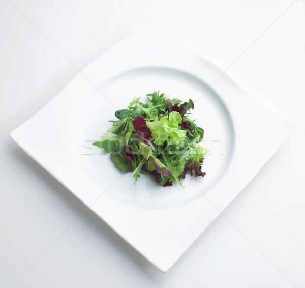 Verde higiene salada legumes pronto prato Foto stock © JohnKasawa