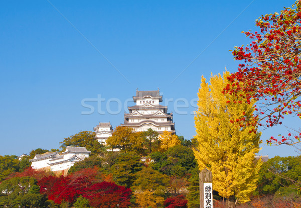 Kale Osaka Japonya duvar Stok fotoğraf © JohnKasawa