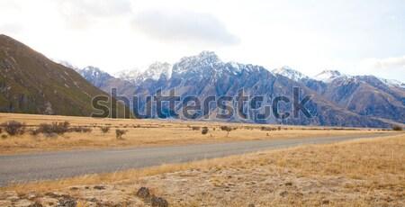Beautiful scenery of Aoraki Mt Cook valleys in the morning time  Stock photo © JohnKasawa