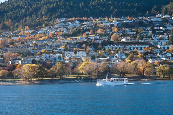 Cruise sightseeing meer zuidelijk eiland Stockfoto © JohnKasawa