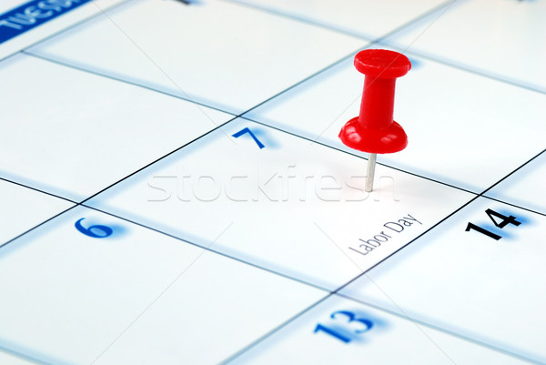 A red pin nailed in the business calendar Stock photo © johnkwan