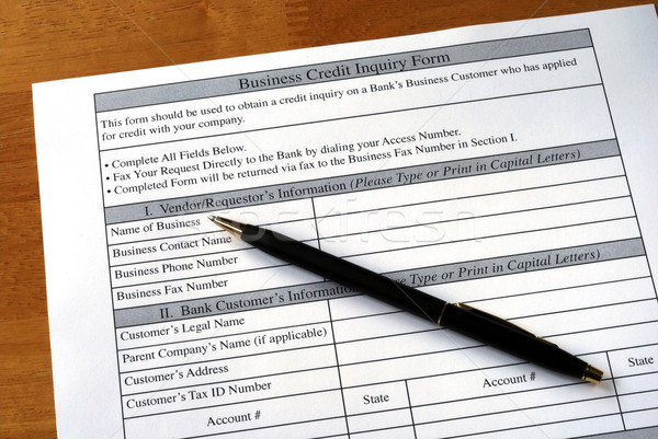Make the business credit inquiry from the bank Stock photo © johnkwan